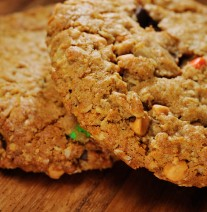 A flourless treat made with peanut butter, oats, butterscotch, chocolate chunks and M&M's